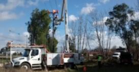 Proyectos y servicios eléctricos